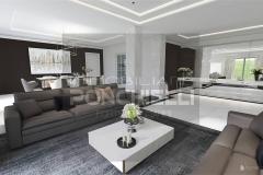 Immobiliare-Ponchielli-Villa-Moderna
